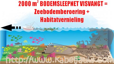 Bodemsleepnet habitat vernieling, niet duurzame visvangt