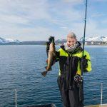 Kabeljauw vissen Noorwegen